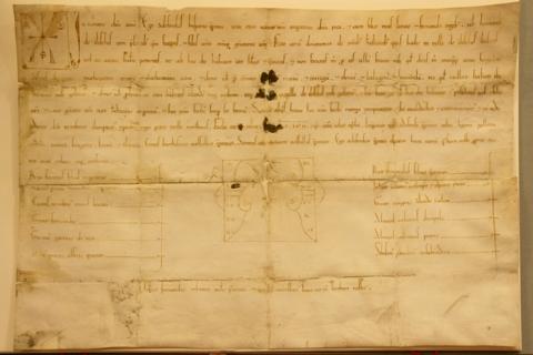 Carta Puebla de Illescas Alfonso VII, Muy parecida a la Almaguereña